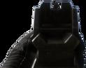 AK-12 iron sights CoDG