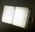 Journal CoD WWII