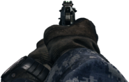 M9A1 iron sights CoDG