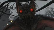 Bat Closeup BO4