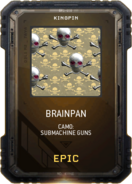 Brainpan Camo Supply Drop Card MWR
