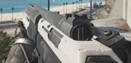 Proteus shotgun mode IW