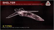 Skelter Description IW