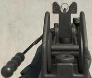 BO4 grav iron sight