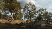 KrovnikFarmland Orchard2 Warzone MW