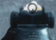 M14 ADS BOII