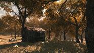 KrovnikFarmland WoodsHut Verdansk84 WZ