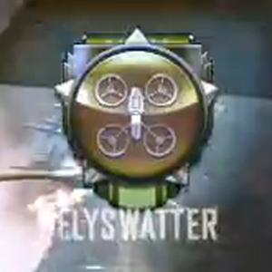 Flyswatter Medal BOII.png