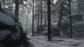 Ardennes Forest Loading Screen 4 WWII