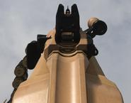 RAAL MG Aiming MW2019
