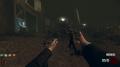 Default Weapon Zombies BOII
