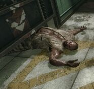 277px-Dead Sergei