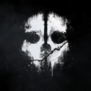 Logan Walker skull mask pattern CoDG