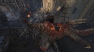 Another Dead Dragon GorodKrovi BOIII