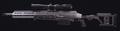 HDR Gunsmith Preview MW