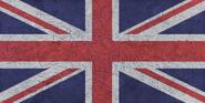 UK Punk Camouflage flag texture BOII