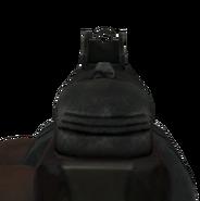PPSh-41 Iron Sights CoD