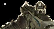 Peacekeeper Grip BOII