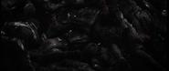 Bundle of corpses BOCW
