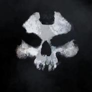 Alex -Ajax- Johnson skull mask pattern CoDG