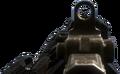 SC-2010 iron sights CoDG