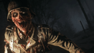 Army of the Dead Zombie Close Up WWII