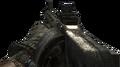 Striker MW2