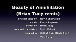 Beauty_of_Annihilation_REMIX_COD_BO_III
