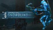 Operation Snowblind Promo BO3.png