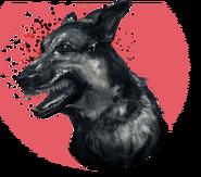 Attack dogs ELITE
