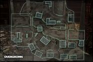 Map Overgrown MW2