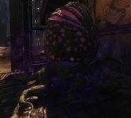 Purple Harvest Pod BOIII