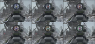 Black Ops Sights