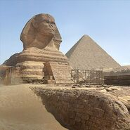 The War Machine Egypt