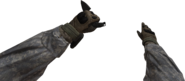 Rappel Knife MW2