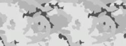 Kamuflaż arktyczny
