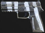 M19 Зебра