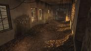Asylum pietro 1