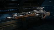 Drakon Gunsmith model Extended Mags BO3