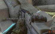 M14 CoDO