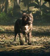 Bo4 nomads dog specialist hq