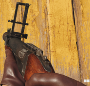 M79 First Person BOCW