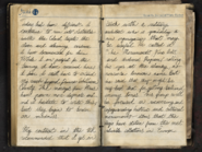 MariesJournal Entry1 1 ViralCampaign WWII
