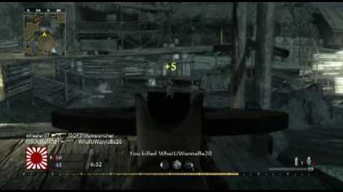 Call of Duty World at War FFA Dp-28