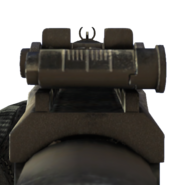 Vepr iron sights CoDG