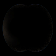 Binoculars overlay MW2