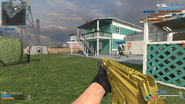 AK117 Gold CoDO