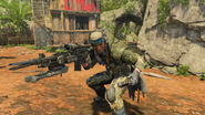 Outrider Hawk control third-person in-game BO4