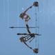Compound Bow model CoDO