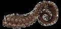 Margwa tentacle BO3